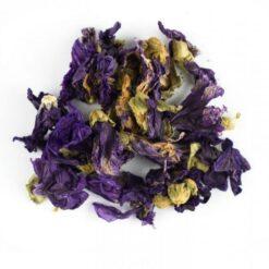 Kaasjeskruid-bloem